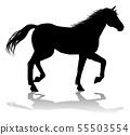 Horse Silhouette Animal 55503554