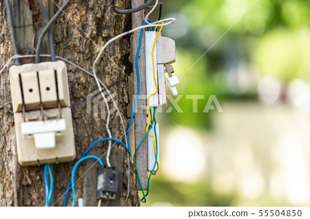 Dangerous electric cable and equipment set up on the tree 55504850
