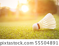White Shuttlecock for badminton on green grass 55504891