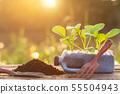 綠色 生態 生態學 55504943