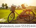 Red Japan style classic bicycle at the green field 55505444