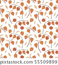 Beautiful hand drawn floral seamless pattern. Physalis fruit, leaves and branches isolated on white 55509899