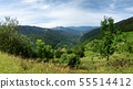 green landscape in the mountains, French Pyrenees 55514412