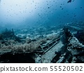 Coral Reef underwater in the sea 55520502