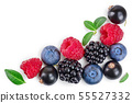 blackberry blueberry raspberry black currant isolated on white background with copy space for your 55527332