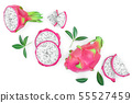 Dragon fruit, Pitaya or Pitahaya isolated on white background with copy space for your text. Top 55527459