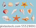 Hand drawn shellfish and starfish on white 55529091