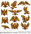 Golden eagle, hawk, falcon, healdic birds of prey 55532732