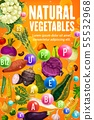 Vitamins in tomato, bean, carrot, corn vegetables 55532968