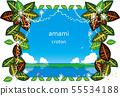아마미 남국 식물 크로톤 55534188