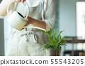 식물 관수 55543205