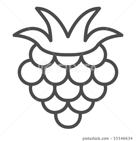 Raspberry outline icon, fruit symbol, healthy food vector sign isolated on white background. berry 55546634