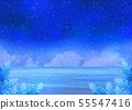 充滿星星和大海的天空在晚上 55547416