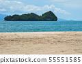 Untouched sandy beach at summer day 55551585