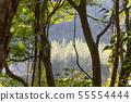 山裡 山の中 山上 森林 Forest 桃園虎頭山 觀光景點 休閒娛樂 55554444