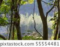 山裡 山の中 山上 森林 Forest 桃園虎頭山 觀光景點 休閒娛樂 55554481