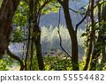 山裡 山の中 山上 森林 Forest 桃園虎頭山 觀光景點 休閒娛樂 55554482
