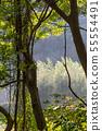 山裡 山の中 山上 森林 Forest 桃園虎頭山 觀光景點 休閒娛樂 55554491