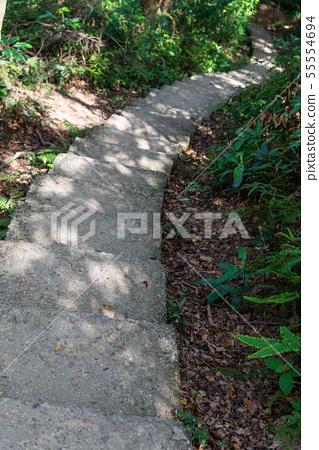 山裡 山の中 山上 森林 Forest 桃園虎頭山 觀光景點 休閒娛樂 55554694