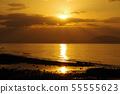 Lion of angel of Ariake Sea 55555623
