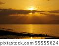 Lion of angel of Ariake Sea 55555624