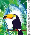 cute toucan vector card 55557080