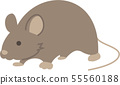 mouse 55560188