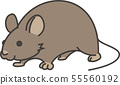 mouse 55560192