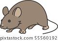 一隻老鼠 55560192