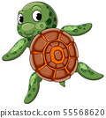 Cute turtle swimming with good posing 55568620