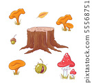 Set in the style of hand drawing forest stump, mushrooms and berries, autumn and leaves. 55568751