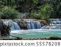 Tat Kuang Si waterfalls near Luang Prabang, Laos 55578208