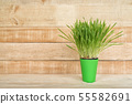 Green flower pot with greens on the table stands 55582691