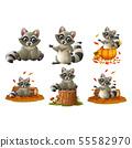 Cartoon happy raccoon illustration collections 55582970