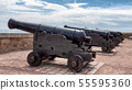 old cannons on the walls of Sable d'Olonne, 55595360
