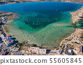 Beautiful turquoise bay at Formentera, aerial view. 55605845