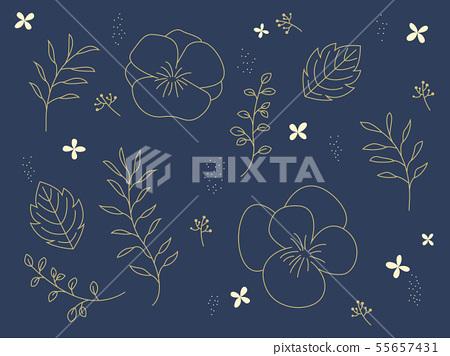 金植物矢量圖 55657431