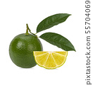 lemon with green leafs on white background 55704069