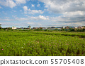 鄉間 countryside 田舎 いなか 郊區 郊外 こうがい suburbs 鄉野  55705408