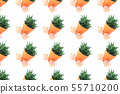 Pattern of Zine type catcti in pot with sunglasses isolated 55710200
