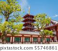 四天王寺中門和五層塔 55746861