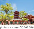 四天王寺中門和五層塔 55746864