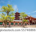 四天王寺中門和五層塔 55746866