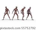 남성 해부학 근육 3DCG 일러스트 소재 55752792