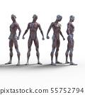 남성 해부학 근육 3DCG 일러스트 소재 55752794