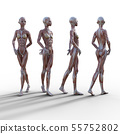 여성 해부 근육 3DCG 일러스트 소재 55752802