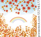 Autumn leaves and autumn leaves 55798377