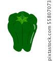 피망 green pepper 55807073
