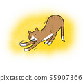 Illustration of a cat stretching and relaxing (yellow background) 55907366