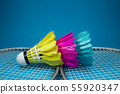 Feathered shuttlecocks and badminton rackets 55920347